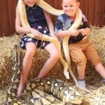 Children holding snakes together