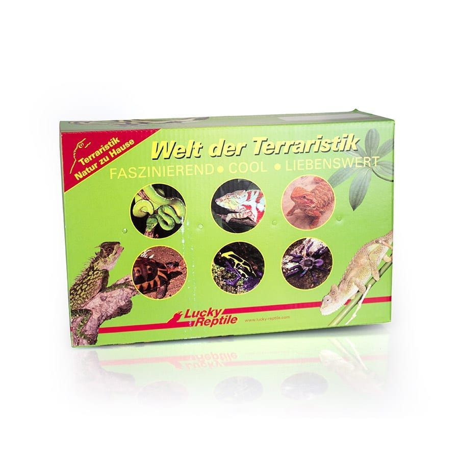 Lucky Reptile Transport Box for Lizards Small AB S