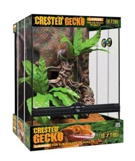 Exo Terra Crested Gecko Kit Large 60cm Tall PT3779