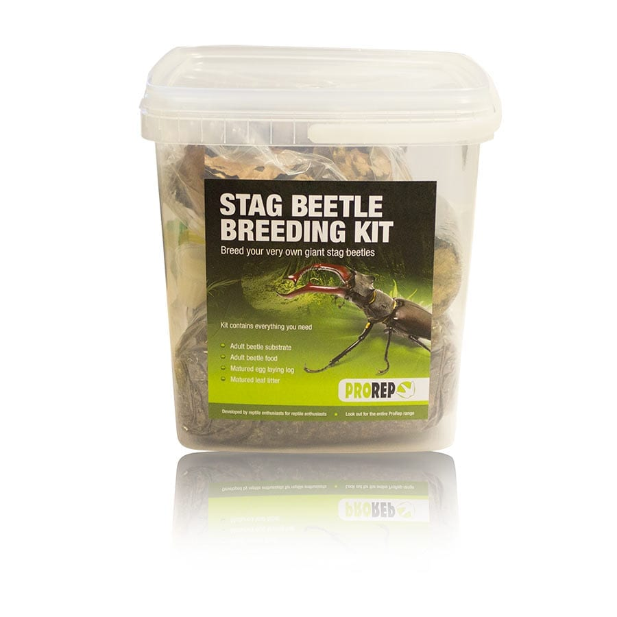 ProRep Stag Beetle Rearing Kit