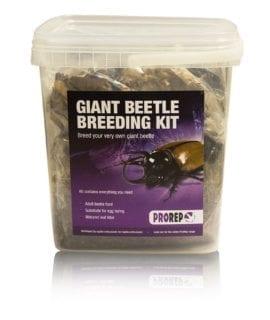 ProRep Chafer Beetle Rearing Kit