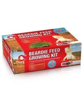 ProRep Beardie Feed Growing Kit, KPT055