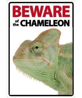 Beware Sign: Chameleon