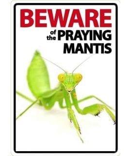 Beware Sign: Praying Mantis