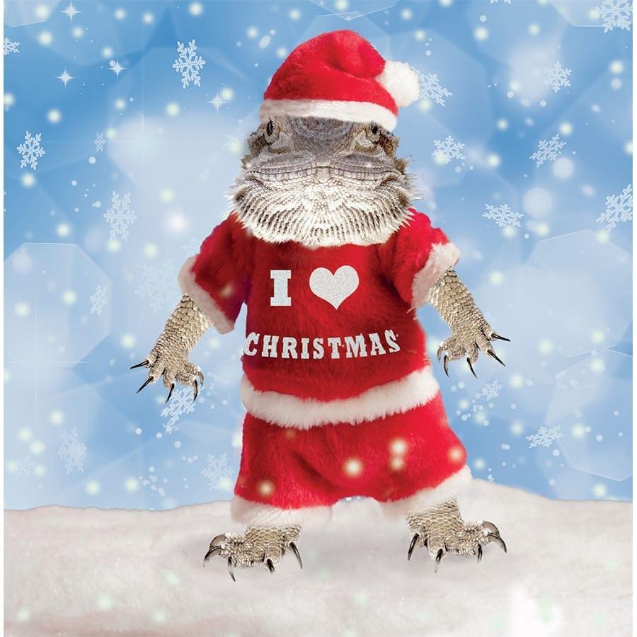 ProRep Christmas Cards (Pk10) B.Dragon Santa