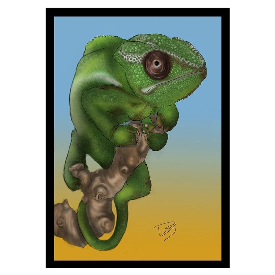 CC Greetings Card Chameleon