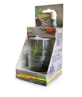 Lucky Reptile Critter Box (WITH D/LEAF MANTID) CB-1