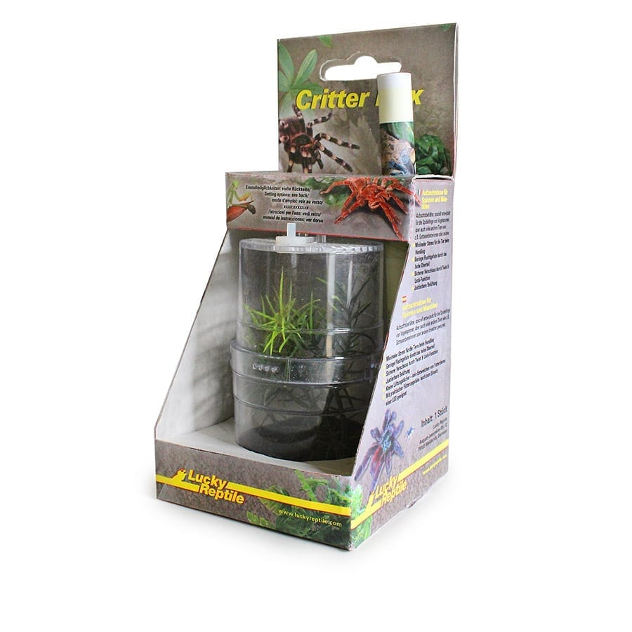Lucky Reptile Critter Box (WITH POLYSPILOTA MANTID) CB-1