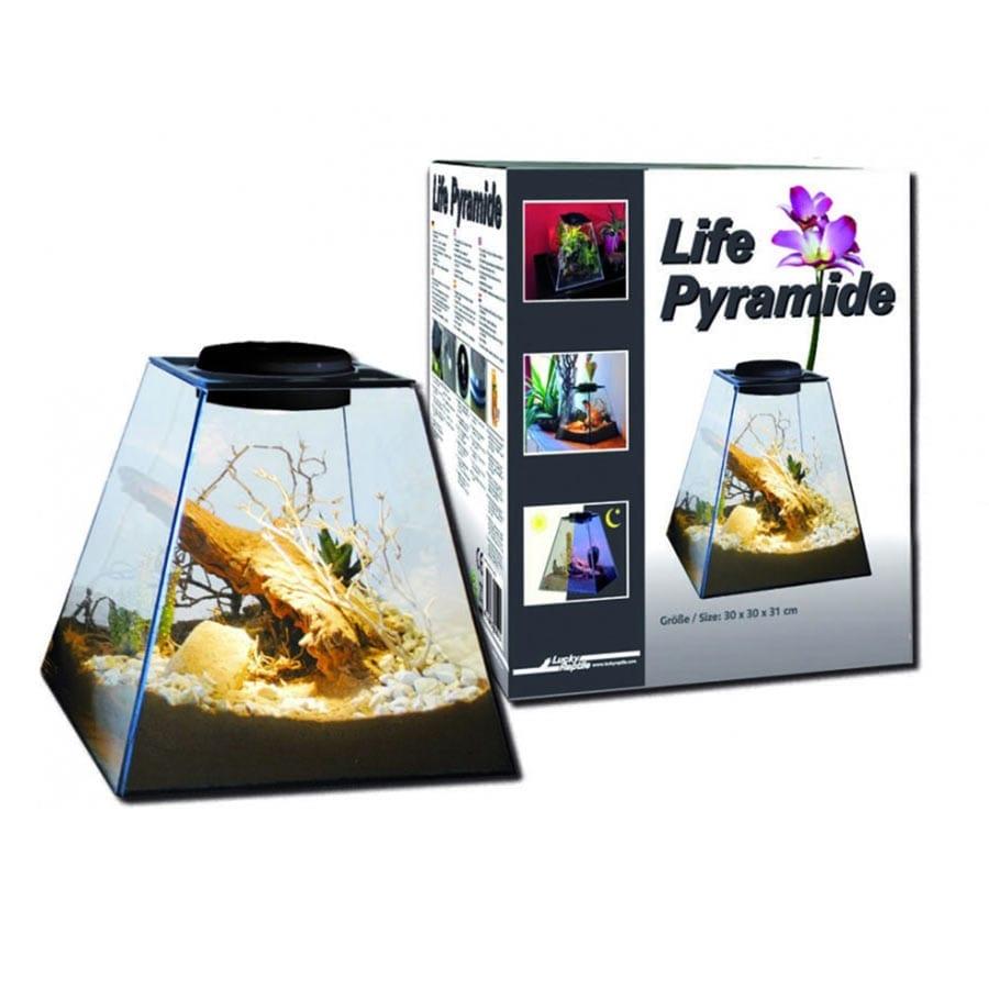 Lucky Reptile Life Pyramid 30, Multicol. Lifelight, LP-30MUK