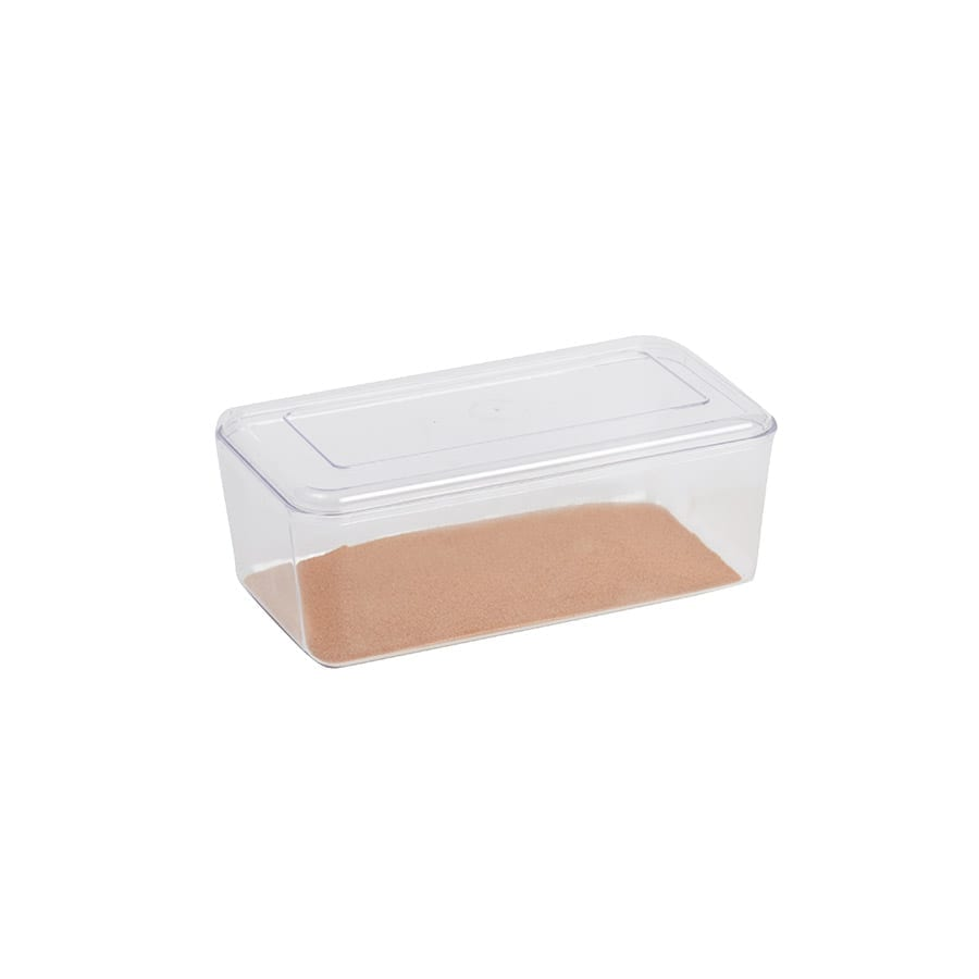 Stewart Clear Hatchling  Box, Small
