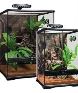 Full Glass Terrarium Dual front doors for an escape free access Unique front window ventilation Full metal screen for top ventilation Includes all necessary decoration items Natural Banyan Tree background Multifunctional ornament with New Caledonian Kanak tribal art, built-in water and food dish Bird's Nest Fern decorative plants Includes Day & Night LED Fixture (USA Version of the PT3778 Small Crested Gecko Kit does not include the LED Fixture) Analog Thermometer & Hygrometer Plantation Soil substrate