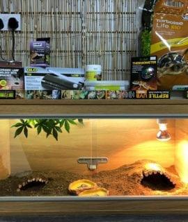 OUR tortoise vivarium set up kit-1