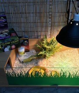 OUR Deluxe Tortoise Table Set up Kit