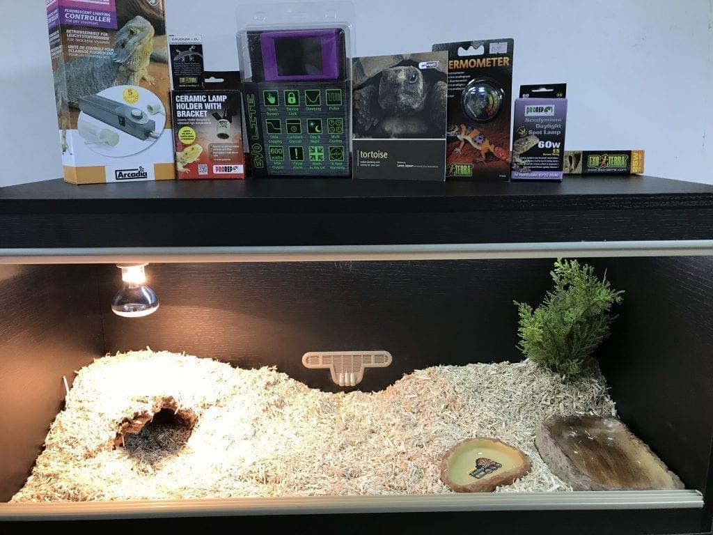 Tortoise Vivarium Set Up Plus Thermostat Blackpool
