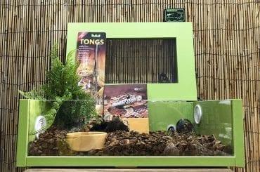 Corn Snake Terrainium Set Up