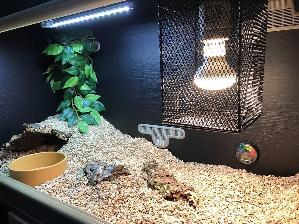 Fish & Aquariums Reptile Supplies Deluxe Plastic Aquarium Or Terrarium Enclosure Cage Small Clients First