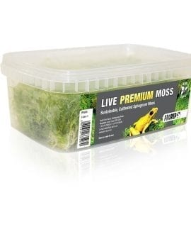 PR Live Plant: Premium Sphagnum Moss,1000ml