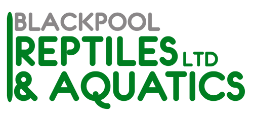 Blackpool Reptiles & Aquatics