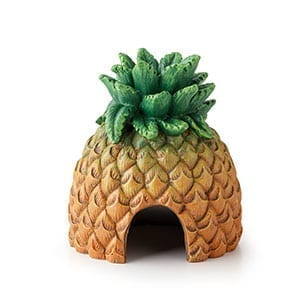 ET Tiki Pineapple Hide, PT3160