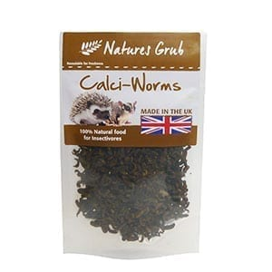 NG Dried Calci Worms 50g