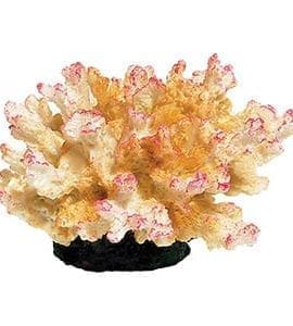 AQ Coral Pink 10.5 x 9.5 x 6.5cm AQ11026