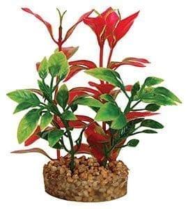 AQ Plant with Sandstone 4.5cm(base)x10cm AQ19012