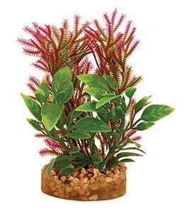 AQ Plant with Sandstone 4.5cm(base)x9.5cm AQ19007
