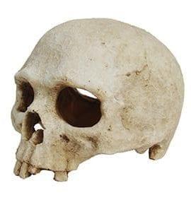 LR Deco Skull Monkey, DS-M