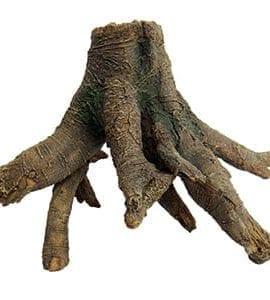 LR Mangrove Roots medium, MR-M