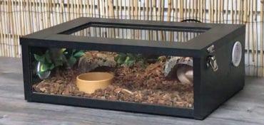 OUR Royal Python Complete 18″ Terrainium Kit