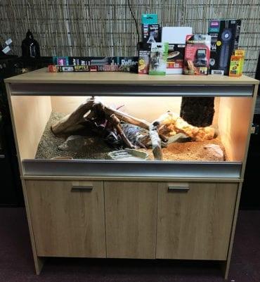 OUR Bearded Dragon Complete Adult Vivarium Kit + Thermostat