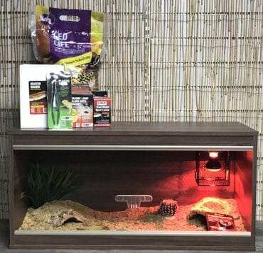 OUR Leopard Gecko Complete Juvenile Vivarium Kit