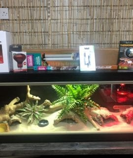 OUR Juvenile Bosc Monitor Set up Kit with Thermostat