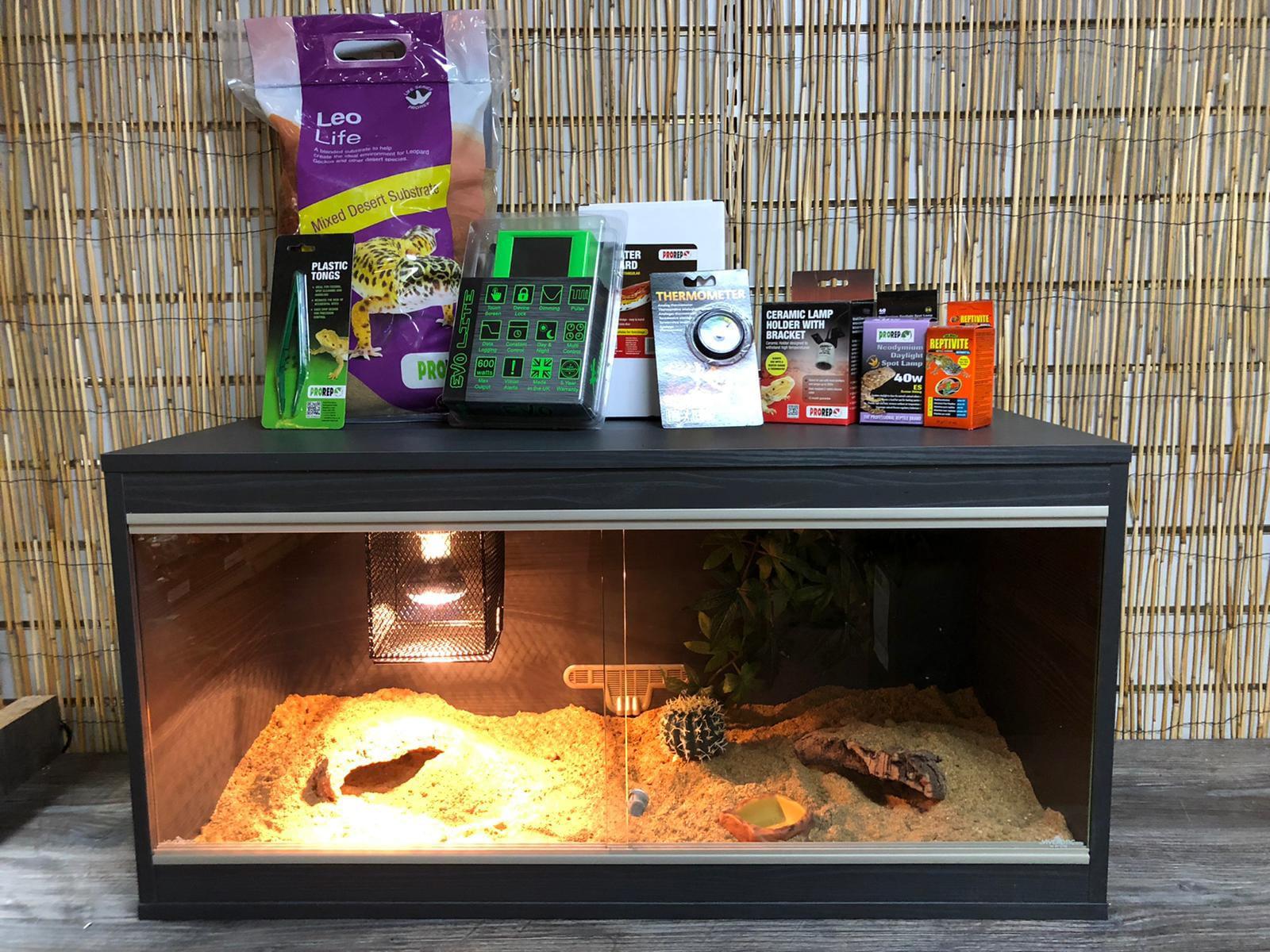 Our Leopard Gecko Vivarium Set Up Kit With Thermostat Gecko Set Up Kit