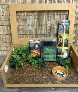 OUR Royal Python 24inch oak set up kit