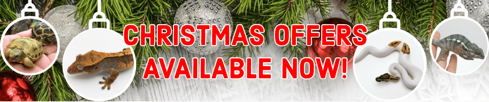 Blackpool Christmas offers link to offer page