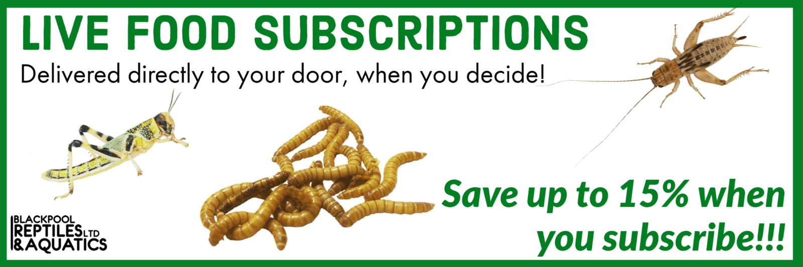 Blackpool Reptiles Live food Subscription