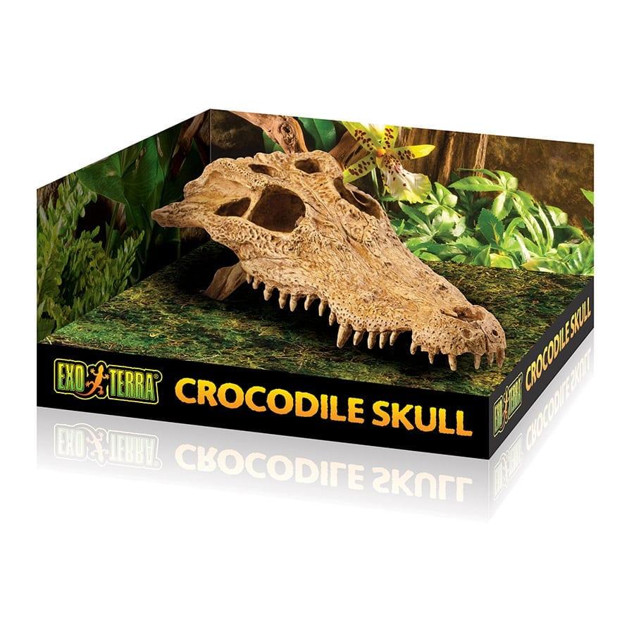 Exo Terra Crocodile Skull PT2856