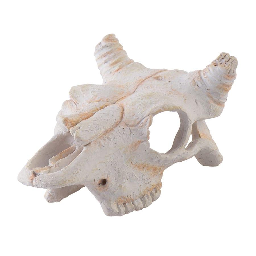 Exo Terra Buffalo Skull Small PT2925
