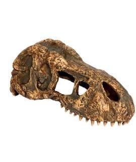 Exo Terra TRex Skull Small PT2860