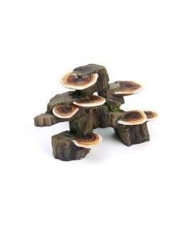 Lucky Reptile Deco Wood Mushroom Trunk DWMT