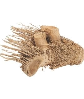 ProRep Hedgehog Bamboo Root Medium DMB100