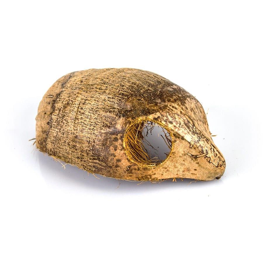 ProRep Coco Hide, DPD015