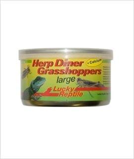 LR Herp Diner Grasshoppers Lg 35g