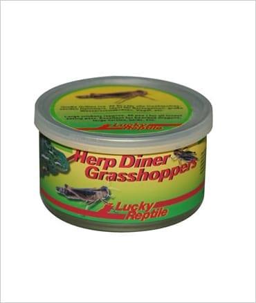 LR Herp Diner Grasshoppers Med.