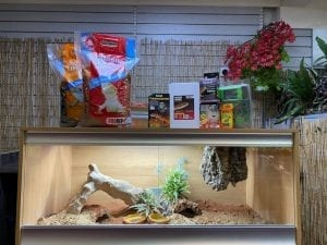 OUR-bearded-dragon-large-deep-vivarium-set-up-kit-4.jpg