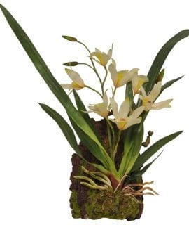 Lucky Reptile Hanging Orchid White, IF-16