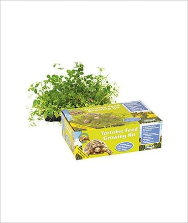 PR Tortoise Feed Growing Kit