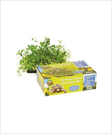 PR Tortoise Feed Growing Kit