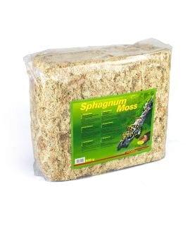Lucky Reptile Sphagnum Moss Bale 500g SM 500